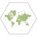 global-reach-icon