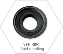 Seal ring made from silicon nitride for fluid handling applications